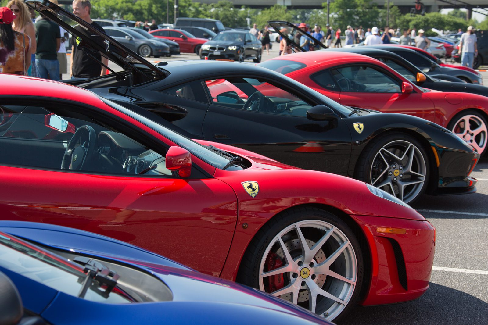 Rows of Ferrari's at the CF Charity Supercar show